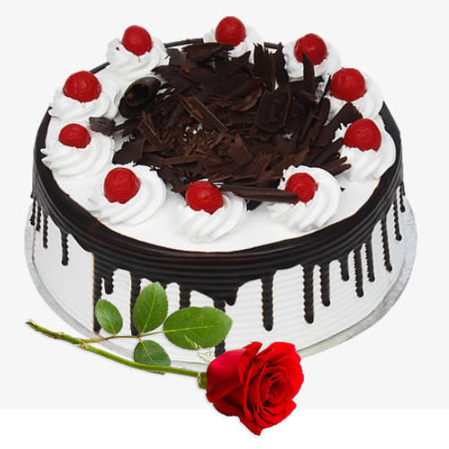 Striking Combo of Red Rose N Black Forest Eggless Cake
