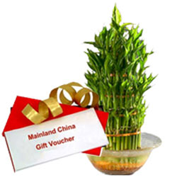 Fabulous Choice of Mainland China Gift Voucher worth Rs.1000 along with Lucky Bamboo in a Bowl