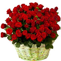 Magnificent Bouquet of 150 Dutch Roses in Red