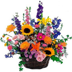 Lovely Basket Displaying Seasonal Florals