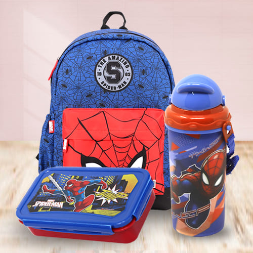 Stunning Marvel Avenger Spiderman Back to School Mini Combo