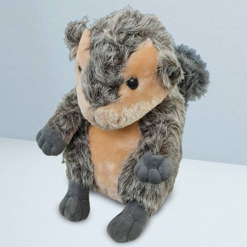 Smart-Looking Squirrel Soft Toy